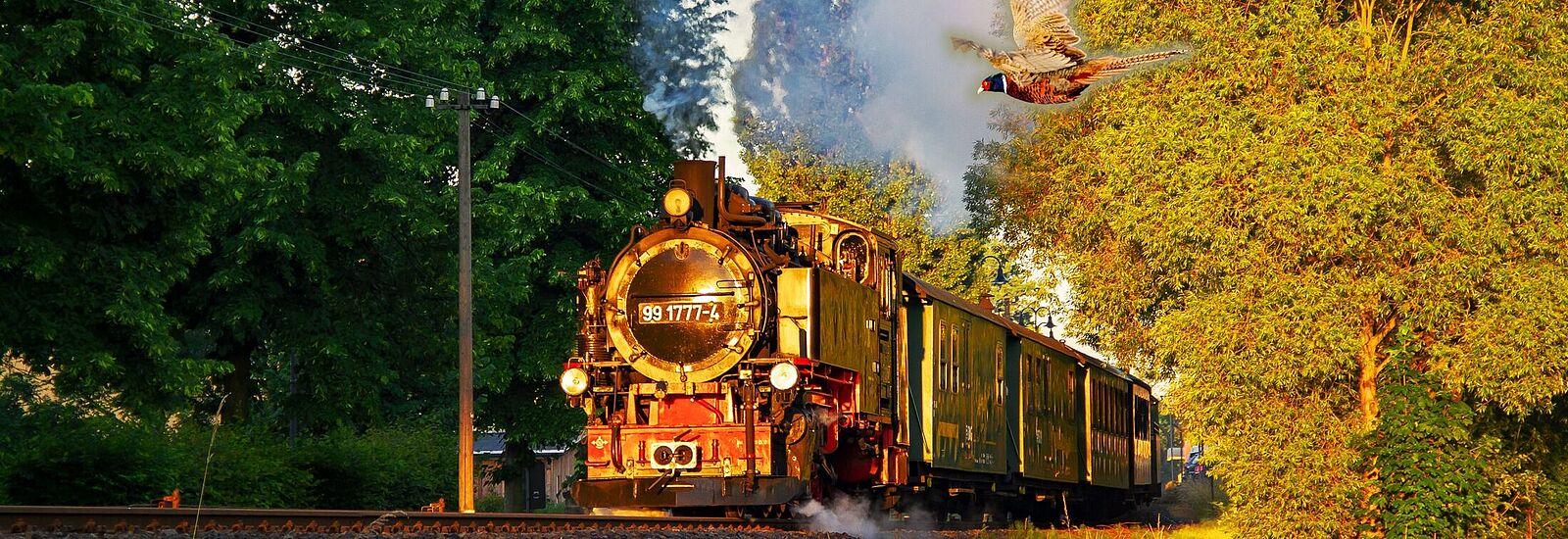 Wild-Romantische Dampfzugfahrt