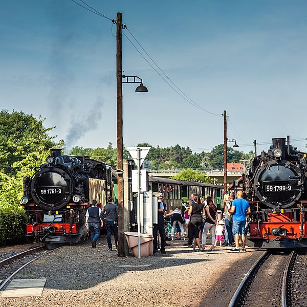 Zwei Dampfzüge im Bahnhof Friedewald Bad