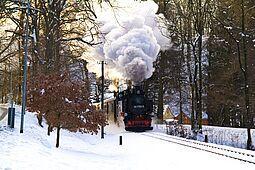 Dampfeisenbahn im winterlichen Lößnitzgrund